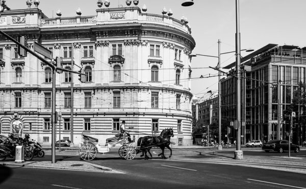 Fotografía de Vienna realizada por Peter Lievano